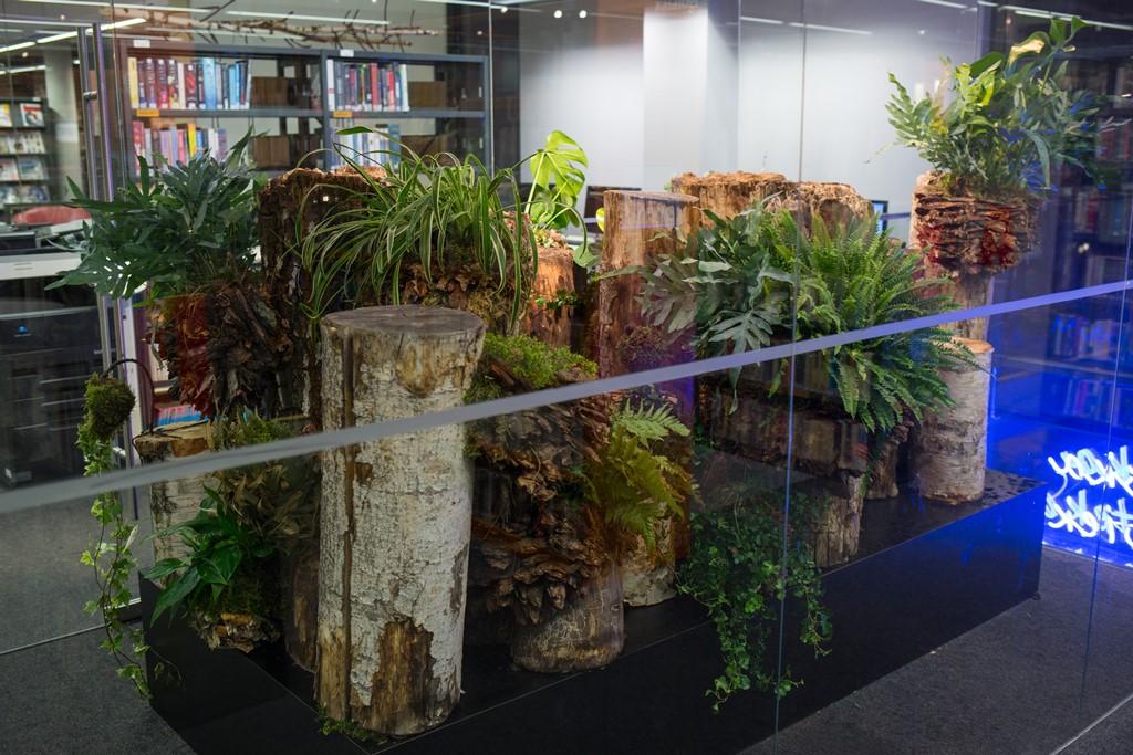 Projekt Elegant Nature