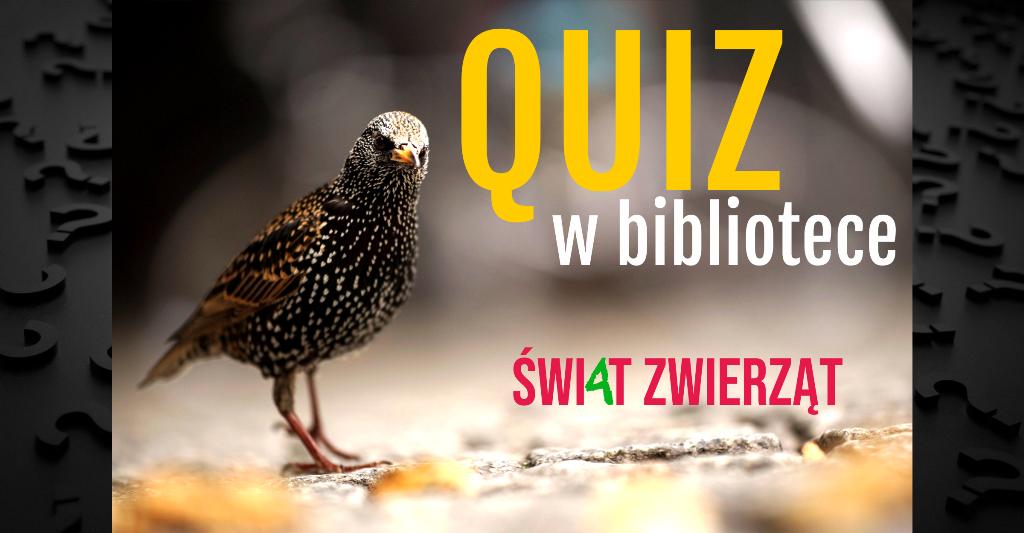 Quiz w bibliotece: świat zwierząt